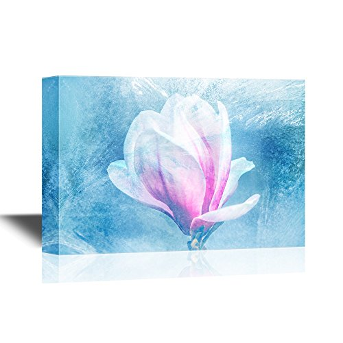 Blossoming Magnolia Flowers in Spring Time Gallery
