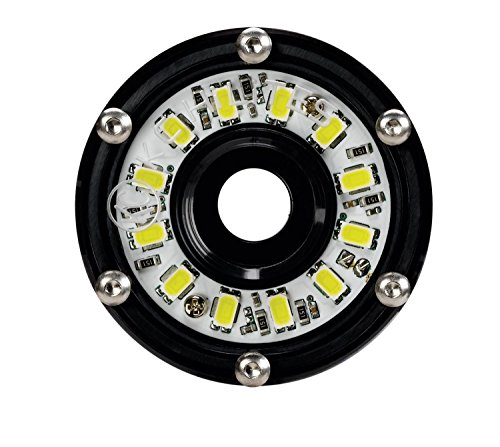 - KC HiLiTES 1350 Cyclone LED 5W 2.2