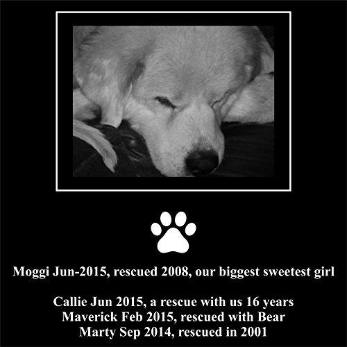 Personalised Pet Stone Memorial Marker Granite Marker Dog...