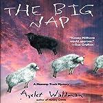 The Big Nap: A Mommy-Track Mystery, Book 2   Ayelet Waldman