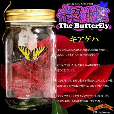 Chou Chou Electronic Butterfly in a Jar (Yellow Swallowtail)