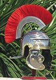Roman Gallic 'G' Centurion Helmet -One Size - Metallic Armour
