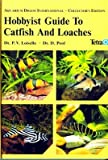 img - for Hobbyist Guide to Catfish and Loaches book / textbook / text book