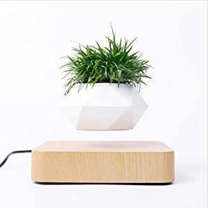 DRESSPLUS New Magnetic Levitation Air Bonsai Pot,Creative Mini Sky-Garden Rotating Flower Pot Planter, for Home & Garden Desk Decoration and Gifts (Light Wooden Color)