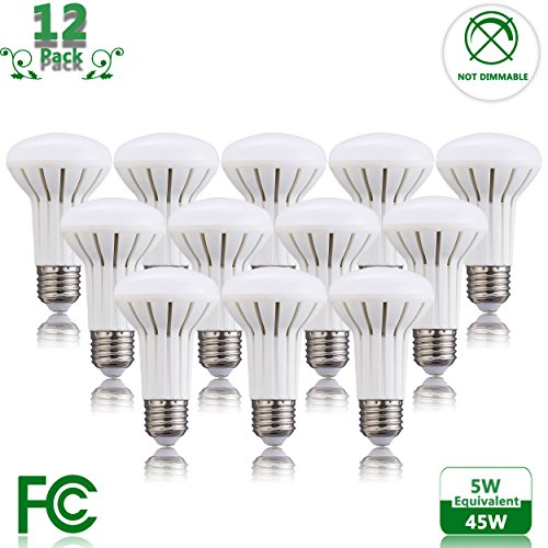 Halogen Flood Light Bulb Disposal - 9