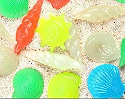 Shindel Colorful Pebble Conch Shell in the Dark for Aquarium Fish Tank 100 PCS