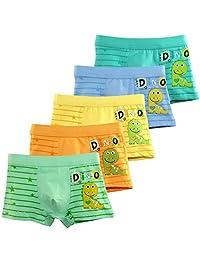 BOOPH Dinosaur Boys'Boxer Brief Little Boy Cotton Underwear 2-12 years