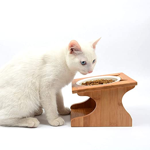 Petsoigné Cuenco para Gatos Perros Elevado Comedero Gato Perro en Cerámica/Acero Inoxidable con Soporte de Madera (1 Cuenco, Cerámica): Amazon.es: Productos para mascotas
