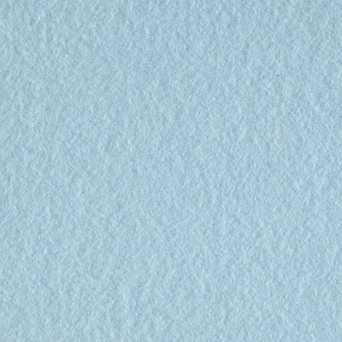 lar Fleece Solid Light Blue Fabric by The Yard, Light Blue ()