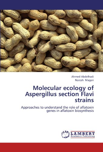 Molecular ecology of Aspergillus section Flavi strains: Approaches to understand the role of aflatoxin genes in aflatoxin biosynthesis