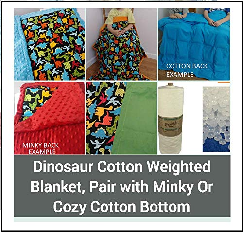 Family Enchanted Weighted Blankets for Kids, Autism, Anxiety, Children, Sleep Therapy, Cotton Dinosaur Print with Minky, Cotton, or Cozy Flannel Bottom (Aqua Cozy Cotton Back, SM 34x42 3 LBS)