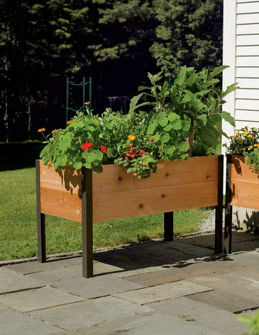 Gardener's Supply Co. 2 Ft x 4 Ft Raised Garden Bed Elevated Cedar Planter Box (24