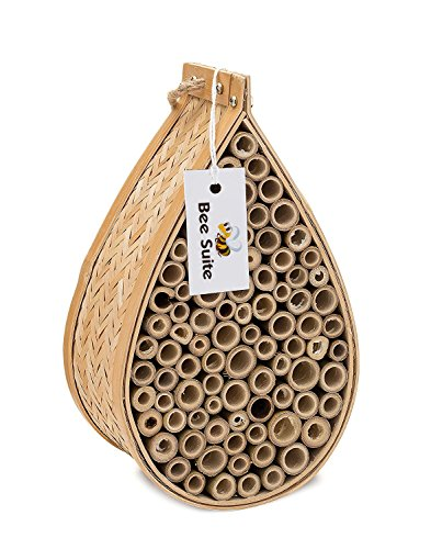 Bee Suite Bee House for Mason Bees- Insect House, Outdoor Garden House, Natural Bamboo (Insects House)