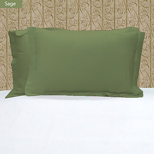 100% Egyptian Cotton Hotel Quality 2 Piece Pillow Shams 600 Thread Count Dust Mite Resistant Solid Pattern ( King 20