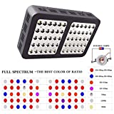 YaeTek 300W Reflector LED Grow Light Full Spectrum for Greenhouse and Indoor Plant Flowering Growing (Reflector 300W(Black Box))