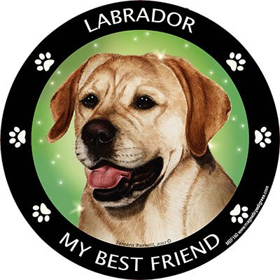 Yellow Labrador My Best Friend Magnet