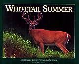Whitetail Summer, John J. Ozoga, 1572230444