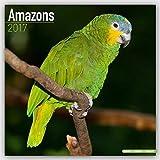 Amazon Parrot Calendar - Parrot Calendar - Bird Calendars - Calendars 2016 - 2017 Wall Calendars - Monthly Wall Calendar by Avonside