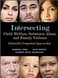 Intersecting Child Welfare, Substance Abuse, and Family Violence : Culturally Competent Approaches, Fong, Rowena and McRoy, Ruth G., 0872931196