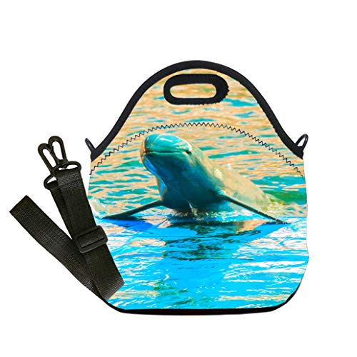 Insulated Lunch Bag, Reusable Outdoor Travel Picnic School Cute Irrawaddy dolphin (Orcaella brevirostris) is floating in the water and Student Company School, Multicolor, Adults and - Irrawaddy Dolphins