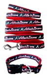 Atlanta Braves Nylon Collar and Matching Leash for Pets (MLB Official by Pets First) Size Large