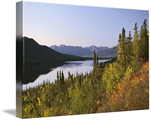 Imagekind Wall Art Print entitled Selby Lake Brooks Range Fall Scenic Arctic AK Gate by Design Pics | 10 x 7