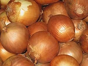 Onion Seeds- Sweet Yellow Spanish Heirloom- 250+ Seeds