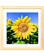 Mxtallup12x12 Diamond Painting Picture Frames Wood Grain Diamond Art Frame 30x30cm ,Display Pictures10x10 Inch/ 25x25 cm with Mat or 12x12 Inch/30x30 cm Without Mat, Cross Stitch Photo Frame Diamond Embroidery Frame Wood Color (TYK0011)