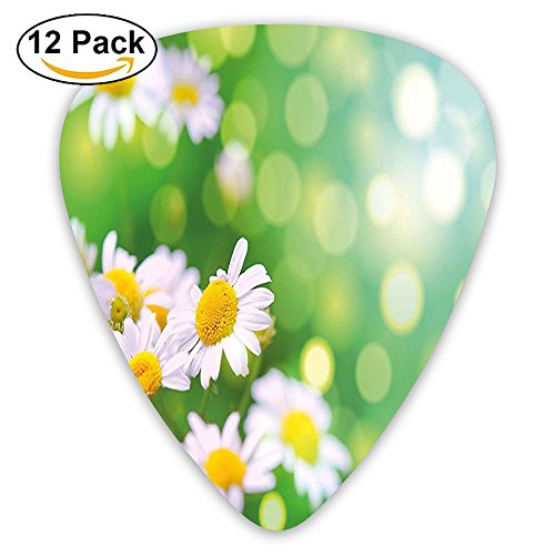 (Newfood Ss Field Of Daisy Flowers Rural Scenery Fresh Spring Meadow Nature Guitar Picks 12/Pack Set)