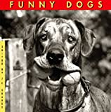 Funny Dogs, Jane Martin, 1556704100