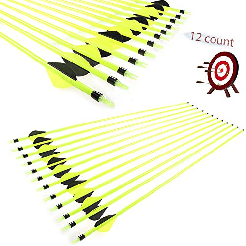 JY-Sports Targeting Arrows 30'' Inch Carbon Fiber Hunting Arrows Outdoors Archery Green Shaft with Replace Arrow Tips and Removable Nock for Compound Bow a Dozen Arrows in Box (Green)