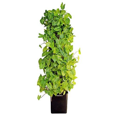 Amazon.com : Florafelt Compact Kit Vertical Garden : Hanging ...