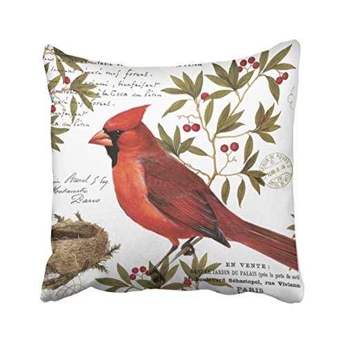 Accrocn Throw Pillow Covers Modern Multicolor Vintage Bird Winter Cardinal Handdrawn Painting Cushion Decorative Pillowcases Polyester 18 x 18 Inch Square Pillowcase Hidden Zipper