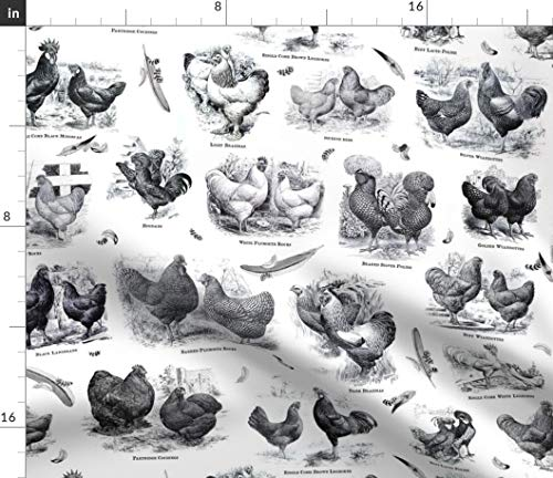 Chicken Rooster Vintage Fabric - Poultry Envy White Black Toile Fancy Breeds Showstock And Wickedrefined Print on Fabric by the Yard - Eco Canvas for Durable Upholstery Home Decor Accessories