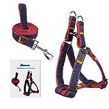 No-Pull Dog Leash Harness, ARIKON Adjustable and Heavy Duty Denim Dog Training Walking Leash Collar for Large Dog