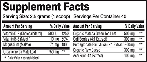 Energy Drink Powder | Natural Caffeine + Nutrition | Yerba Mate + Matcha Green Tea + Goji Berry + Cacao + Pomegranate + Acai Berry + Vitamins | Instant Energy Supplement Mix | 40 Servings
