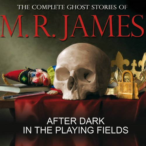 Bargain Audio Book - After Dark in the Playing Fields