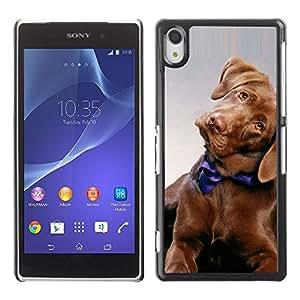 PC/Aluminum Funda Carcasa protectora para Sony Xperia Z2 D6502 D6503 D6543 L50t L50u Golden Retriever Puppy Dog Canine / JUSTGO PHONE PROTECTOR
