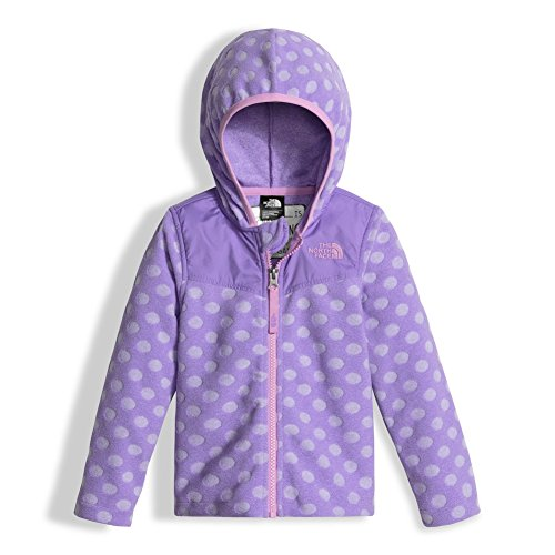 The North Face Toddler Girl's Loti Dotie Hoodie Paisley Purple 2T (Baby North Face Sweatshirt)