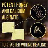 JJ CARE [Box of 10] Honey Calcium Alginate Dressing