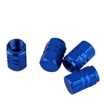 GOOTRADES 12Pcs Tapas para Válvulas de Aire Guardapolvo Tapones de Llantas Neumáticos para Coche Bici Moto (Azul): Amazon.es: Coche y moto