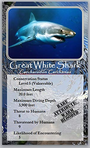Silencing Sharks The Card Game John Hope