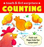 Touch and Feel Surprises Counting, Gerald Hawksley, 0761309802