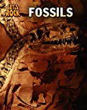 Fossils, Louise Spilsbury and Richard Spilsbury, 143294682X