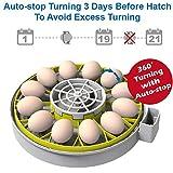 KEBONNIXS 12 Egg Incubator with Humidity