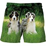 Men's Fitted Casual Shorts and Quick-Drying Sports Pants,Dolphin,Running Surfin