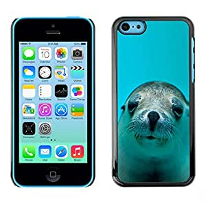 Ihec Tech / LINDO FELIZ LEÓN DE MAR DEL PERRO / Funda Case back Cover guard for iPhone 5C