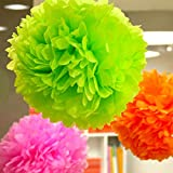 HATABO Pompon Flowers Home Decoration Lilie 1pcs 4inch Tissue Paper Pom Poms Flower Balls Display Flower Wedding Party Home Living Room Decoration Cheap Pompoms (Random)