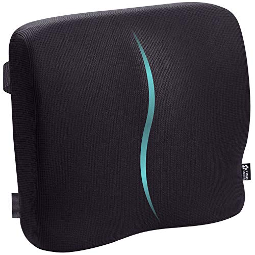 Back Support for Office Chair - Memory Foam Lumbar Pillow - Perfect Cushion for Wheelchair, Car, Computer and Desk Seat