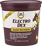FARNAM CO Horse Health Electro-Dex Electrolyte for Horses Cherry 5 Pound